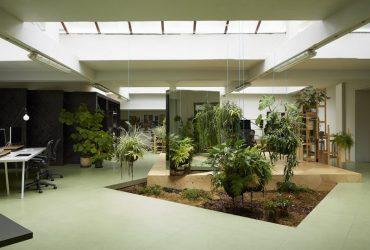 4 claves para diseñar una oficina más fresca y moderna