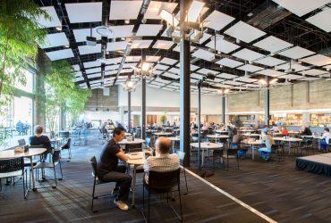 Empresas 2.0: los Millennials cambiaron los paradigmas laborales