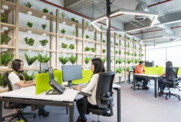El diseño de su espacio de trabajo influye en su negocio