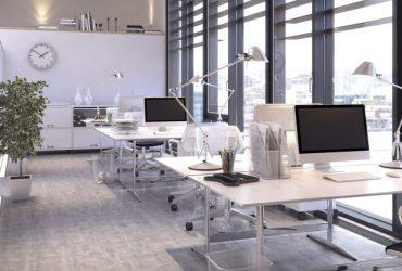 10 elementos clave que se necesitan en una oficina